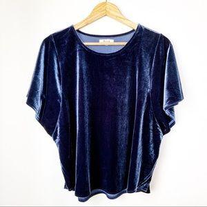 Madewell Navy Blue Velvet Butterfly Top XL